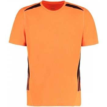 Textiel Heren T-shirts korte mouwen Gamegear KK930 Fluorescerend Oranje/Zwart