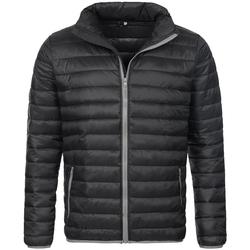 Textiel Heren Dons gevoerde jassen Stedman Active Zwart