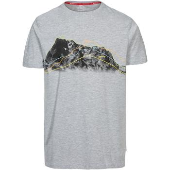 Textiel Heren T-shirts korte mouwen Trespass Cashing Grijs