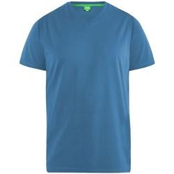 Textiel Heren T-shirts korte mouwen Duke Signature Teal