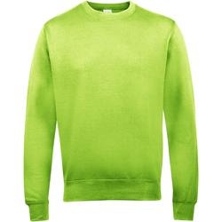 Textiel Heren Sweaters / Sweatshirts Awdis JH030 Kalk groen