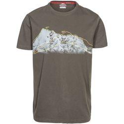 Textiel Heren T-shirts korte mouwen Trespass Cashing Bruin