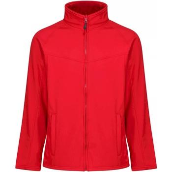 Textiel Heren Windjacken Regatta TRA642 Klassiek rood/grijs