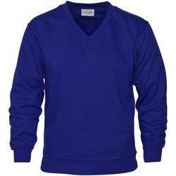 Textiel Heren Sweaters / Sweatshirts Absolute Apparel  Koninklijk