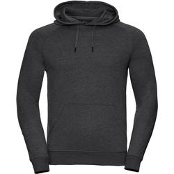 Textiel Heren Sweaters / Sweatshirts Russell Hooded Grijze Mergel