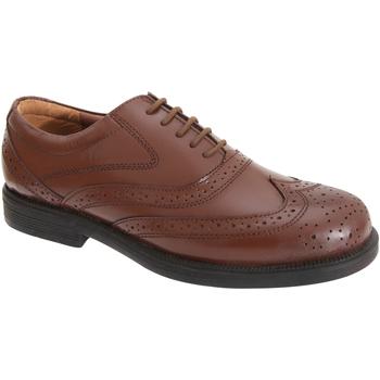 Schoenen Heren Klassiek Scimitar Oxford Bruin