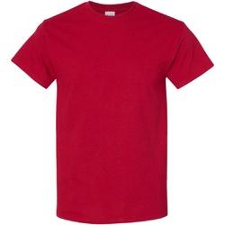 Textiel Heren T-shirts korte mouwen Gildan Heavy Antiek kersenrood