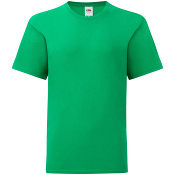 Textiel Jongens T-shirts korte mouwen Fruit Of The Loom Iconic Kelly Groen