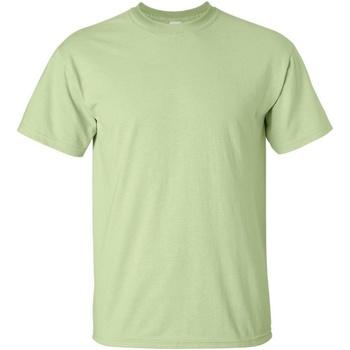 Textiel Heren T-shirts korte mouwen Gildan Ultra Pistachio