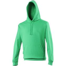 Textiel Sweaters / Sweatshirts Awdis College Kelly Groen
