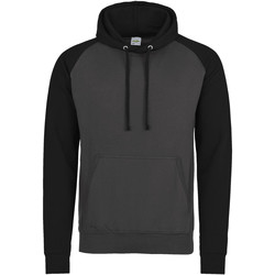 Textiel Heren Sweaters / Sweatshirts Awdis Hooded Houtskool/Jet zwart