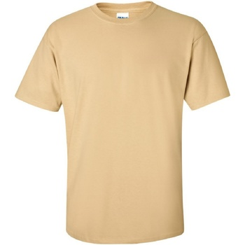 Textiel Heren T-shirts korte mouwen Gildan Ultra Vegas Goud