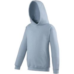 Textiel Kinderen Sweaters / Sweatshirts Awdis Hooded Hemelsblauw