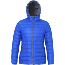 Textiel Dames Dons gevoerde jassen 2786 Hooded Koninklijk/Grijs
