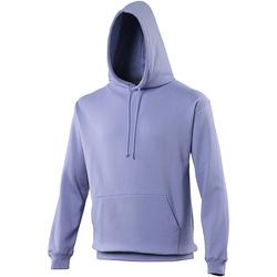 Textiel Sweaters / Sweatshirts Awdis College Echte Violet