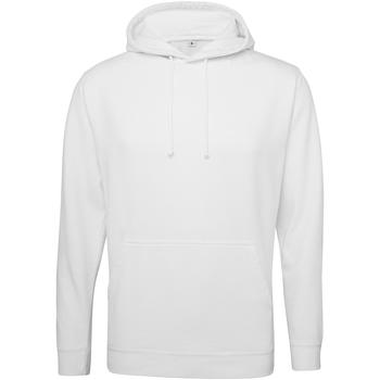 Textiel Sweaters / Sweatshirts Awdis Washed Gewassen Arctisch Wit