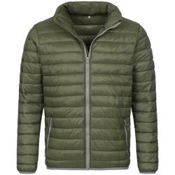Textiel Heren Dons gevoerde jassen Stedman Active Groen