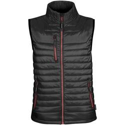 Textiel Heren Dons gevoerde jassen Stormtech Thermal Zwart / Echt rood