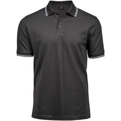 Textiel Heren Polo's korte mouwen Tee Jays Stripe Donkergrijs/Wit