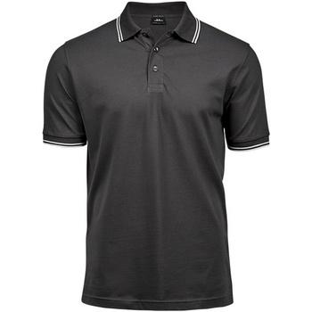 Textiel Heren Polo's korte mouwen Tee Jays TJ1407 Donkergrijs/Wit