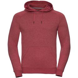 Textiel Heren Sweaters / Sweatshirts Russell Hooded Rode mergel