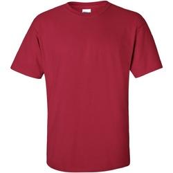 Textiel Heren T-shirts korte mouwen Gildan Ultra Kardinaal