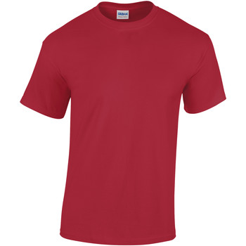 Textiel Heren T-shirts korte mouwen Gildan Heavy Kardinaal