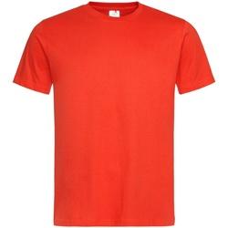 Textiel Heren T-shirts korte mouwen Stedman Classics Donkeroranje