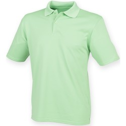 Textiel Heren Polo's korte mouwen Henbury Pique Kalk groen