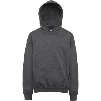 Textiel Kinderen Sweaters / Sweatshirts Gildan Hooded Donkere Heide