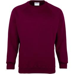 Textiel Kinderen Sweaters / Sweatshirts Maddins  Bourgondië