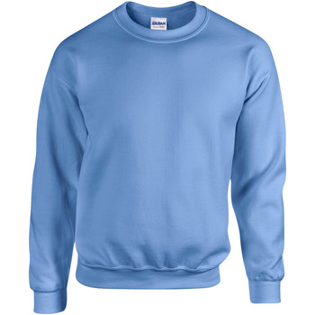 Textiel Sweaters / Sweatshirts Gildan 18000 Carolina Blauw