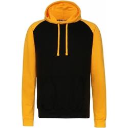 Textiel Heren Sweaters / Sweatshirts Awdis Hooded Jet Zwart/Goud
