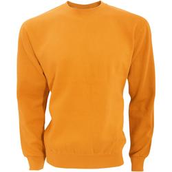 Textiel Heren Sweaters / Sweatshirts Sg SG20 Helder oranje