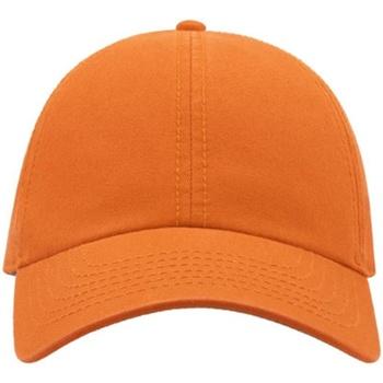 Accessoires Pet Atlantis Chino Oranje