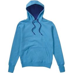 Textiel Heren Sweaters / Sweatshirts Sg Contrast Turquoise/Navy