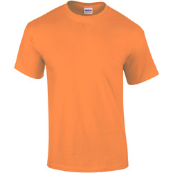 Textiel Heren T-shirts korte mouwen Gildan Ultra Mandarijn
