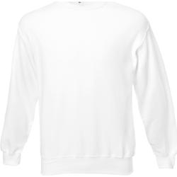 Textiel Heren Sweaters / Sweatshirts Universal Textiles Jersey Sneeuw