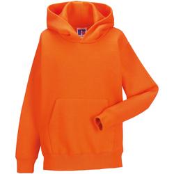 Textiel Kinderen Sweaters / Sweatshirts Jerzees Schoolgear Hooded Oranje
