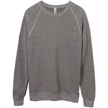Textiel Heren Sweaters / Sweatshirts Alternative Apparel Pullover Eco Grijs
