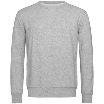 Textiel Heren Sweaters / Sweatshirts Stedman Active Heide Grijs