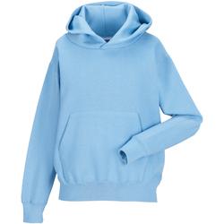 Textiel Kinderen Sweaters / Sweatshirts Jerzees Schoolgear Hooded Hemelsblauw