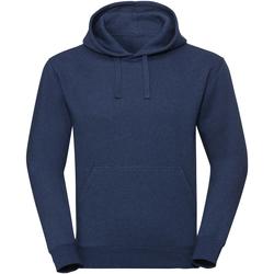 Textiel Sweaters / Sweatshirts Russell R261M Ocean Melange