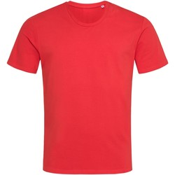 Textiel Heren T-shirts korte mouwen Stedman  Scharlakenrood