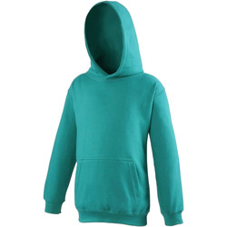 Textiel Kinderen Sweaters / Sweatshirts Awdis Hooded Jade
