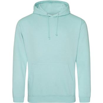 Textiel Sweaters / Sweatshirts Awdis College Pepermunt