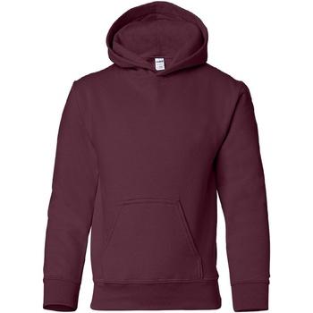 Textiel Kinderen Sweaters / Sweatshirts Gildan Hooded Marron