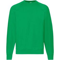 Textiel Heren Sweaters / Sweatshirts Fruit Of The Loom Raglan Kelly Groen