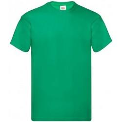 Textiel Heren T-shirts korte mouwen Fruit Of The Loom Original Kelly