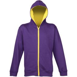 Textiel Kinderen Sweaters / Sweatshirts Awdis JH53J Paars/Zongeel